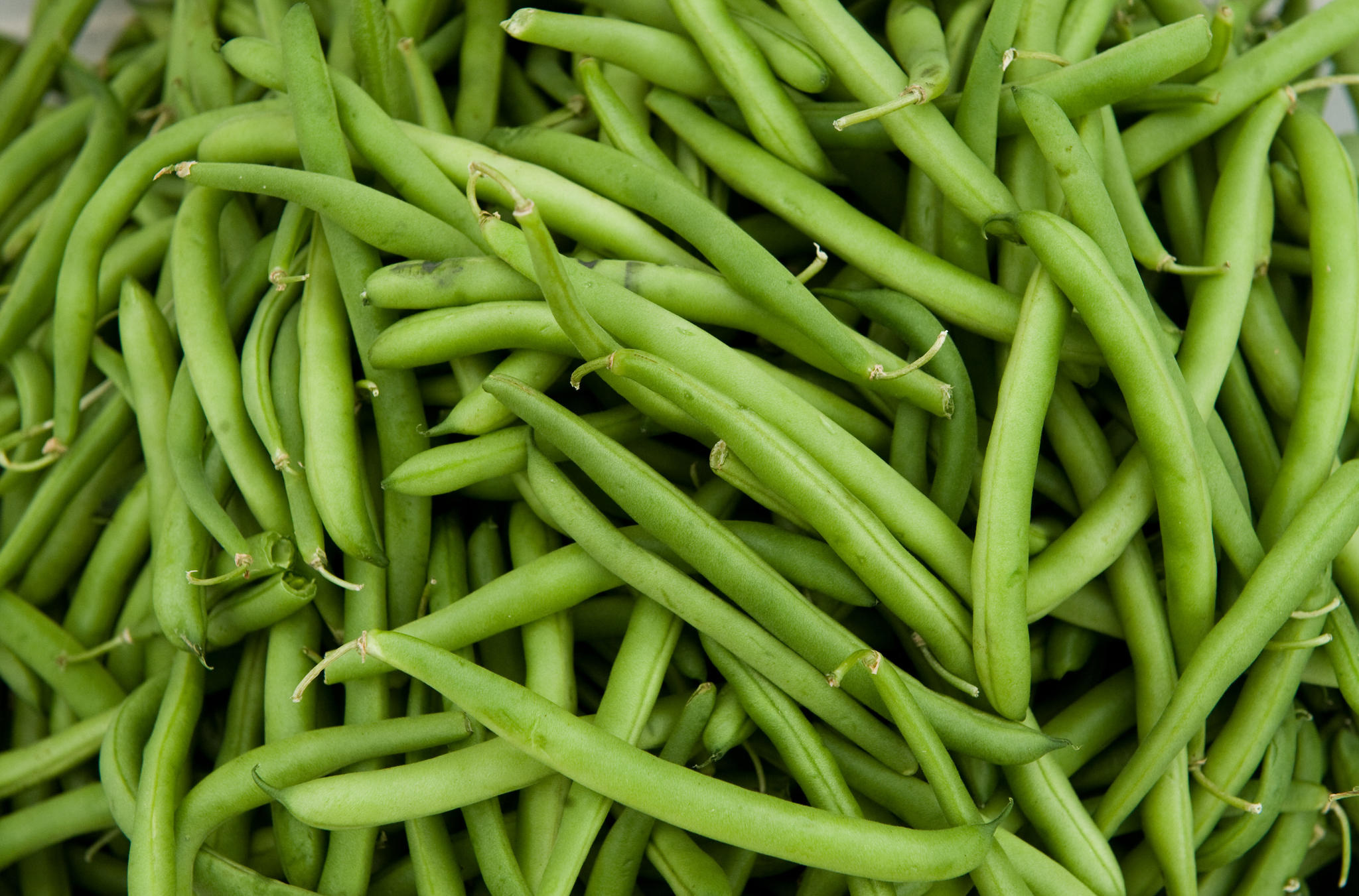 green beans for our June 2 Recipe Box. (Please skip the green bean ...