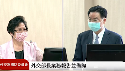 吳釗燮力挺謝志偉 「手拿國旗心想著台灣有什麼錯?」