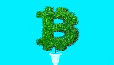 The Future of Bitcoin: 12 Scenarios From Bullish to Bearish