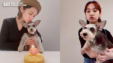 楊丞琳為愛犬慶祝16歲生日 Yumi原來患有認知障礙 | 娛圈事