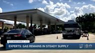 Gas shortages in Florida result of panic buying, experts say