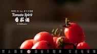 番茄酒 Tomato Spirit【差不多試做】