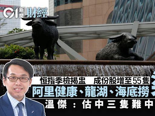 恒指季檢|阿里健康、龍湖、海底撈染藍 溫傑:唔理解選股機制!