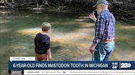 Michigan boy finds mastodon tooth during hike