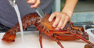 Japanese Street Food - The BEST SEAFOOD in Okinawa Japan!