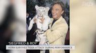 Siegfried Fischbacher, Illusionist Icon of Siegfried & Roy Duo, Dies at 81