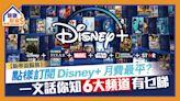 【新串流服務】點樣訂閱Disney+月費最平?一文話你知6大頻道有乜睇 - 晴報 - 健康財富 - 穩賺・消費