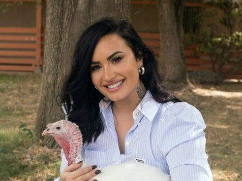 Demi Lovato criticised for roasting turkey weeks after posing with one at animal sanctuary