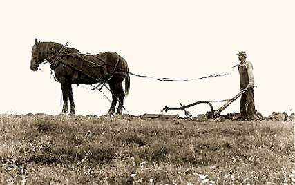 Rural Ministry Ramblings: A Hand to the Plow