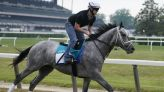 Final flurry of Breeder Cup prep races this weekend