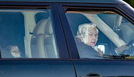 The Queen Rides Around Town with Her Dog and Dog-Print Headscarf