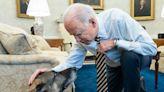 President Joe Biden and Dr. Jill Biden Mourn Death of Dog Champ - E! Online