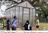 St. Pete Youth Farm to provide affordable fruits, vegetables in South St. Petersburg 'food desert'