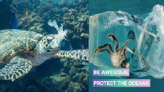別當局外人!6月8日世界海洋日,你也可以一起守護地球的蔚藍心臟!