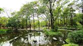 【打卡景點】走出戶外這樣玩,高雄自然系美拍景點!