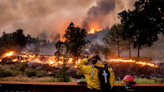 California Wildfire Burns Through Giant Sequoia Forest, Arrested Hiker Suspected of Arson - SF Weekly