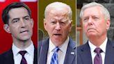 Graham, Cotton slam Biden for throwing 'Border Patrol under the bus'