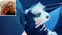 Pitch Perfect's Anna Camp and Boyfriend Michael Johnson Welcome New Puppy Into Their Family
