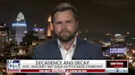 JD Vance: Lawmakers, mandate enforcers 'don't care' they are treating citizens like 'dogs'