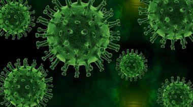 Delta是大魔王?急診醫曝最新研究:病毒量比原始高1260倍