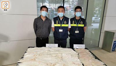 海關破走私瀕危鮮石首魚魚肚案 檢740萬元貨拘1男