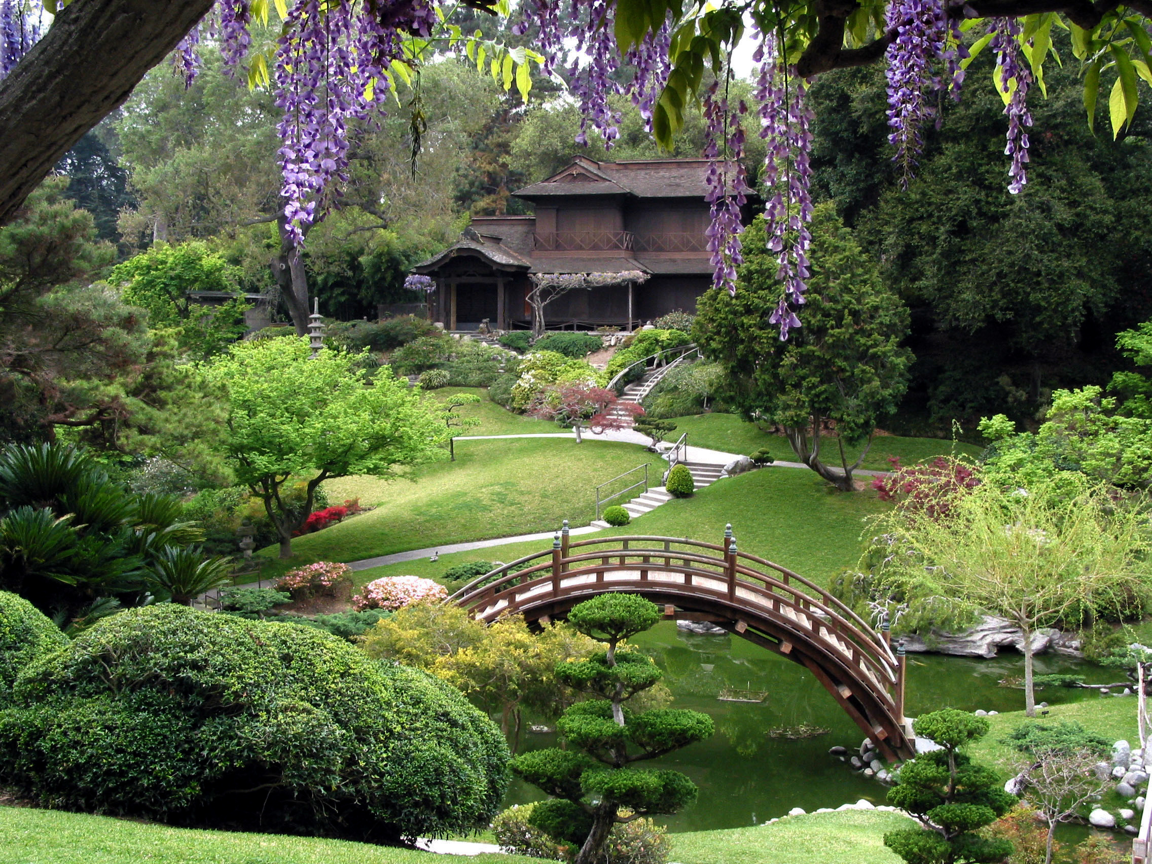 ... Library, Art Collections, and Botanical Gardens - The Japanese Garden