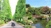 【彰化景點】美如日本兼六園!成美文化園好好拍,落羽松大道、日式庭院享受慢活人生