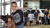 心疼警犬沒防彈衣卻冒險上陣 10歲小暖男創基金會已募得上百件!