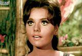 'Gilligan's Island' Star Dawn Wells Dies at 82 | THR News