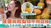 菠蘿鳳梨|5大不同!13款台灣鳳梨品種一覽!5類人慎食!揀靚菠蘿貼士! | HolidaySmart 假期日常
