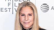 Barbra Streisand Shaded Lady Gaga and Bradley Cooper's A Star Is Born