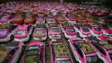 Idled Thai taxis go green with mini-gardens on car roofs