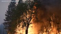 California's Dixie Fire explodes, forcing more evacuations