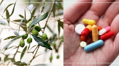 對抗病毒免疫力愈強愈好?藥師:維生素4大天王助修復黏膜、調節免疫力 | 美人計 | 妞新聞 niusnews