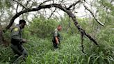 Why Border Patrol is doing more to rescue and identify missing migrants