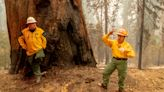 Mother nature gives KNP Complex firefighters whiplash: High winds to follow weekend rain, sparking Monday Red Flag warning