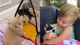 一起包尿布的交情!小男孩溫柔擁抱貓咪說悄悄話:每天都要吃飽喔! | 毛孩日常 | Babyou姊妹淘