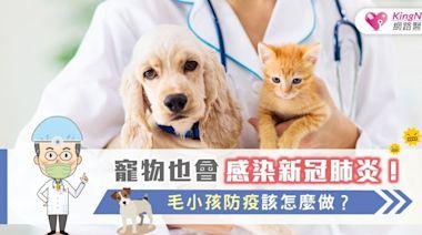 寵物也會感染新冠肺炎!毛小孩防疫該怎麼做? - BabyHome 新知大耳朵