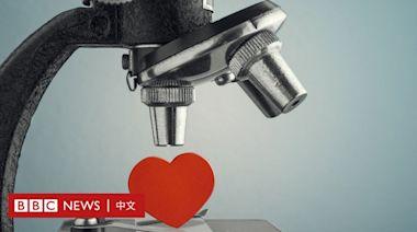 基因配對:科學能否幫你找到人生伴侶?