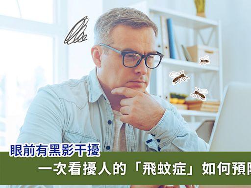 眼睛有黑影怎麼辦?飛蚊症成因、預防、治療方法一次看 | 蕃新聞