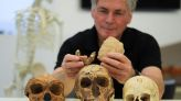 Meet Nesher Ramla Homo - new early human discovered at Israeli cement site