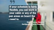 This Cruise Line Is Courting Remote Workers With Fast, Reliable Wi-Fi