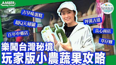 樂闖台灣秘境 玩家版小農蔬果攻略