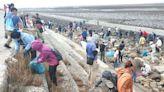 台糖淨灘動員百人清理海岸線 傳達環境永續理念