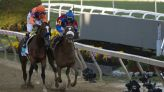 A Longshot to consider in the Preakness Stakes