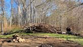 Preparations to rebuild the past - The Martha's Vineyard Times