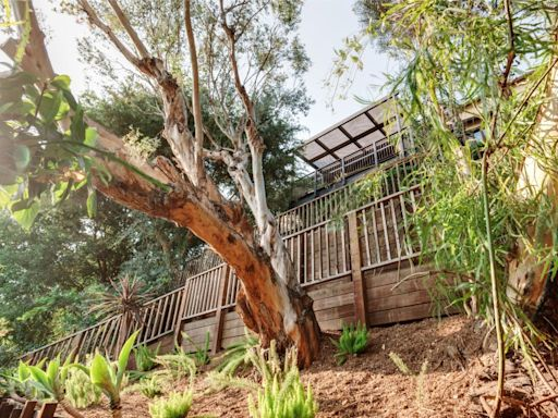Kristen Schaal gets more than she asked for Los Feliz house among the trees