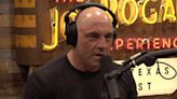 Joe Rogan claims Brian Stelter's ratings are falling because CNN presenter isn't a 'real human'