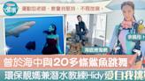 【尊重海洋】曾於海中與20多條鯊魚跳舞 環保靚媽兼潛水教練Hidy愛自我挑戰 - 香港經濟日報 - TOPick - 健康 - 保健美顏