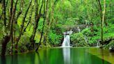 台灣夢幻秘境 珍稀水源驚艷國際